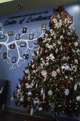 christmas tree (3 of 1)